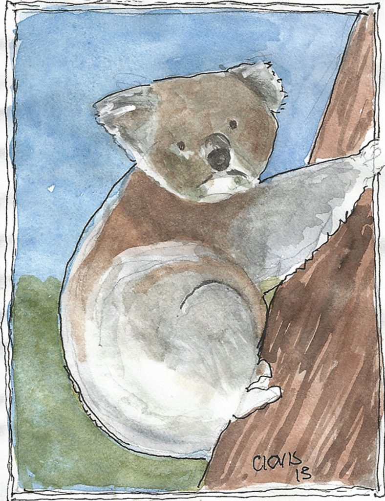 """Koala,"" a Bring-a-Smile watercolor by Clovis Heimsath, artist"