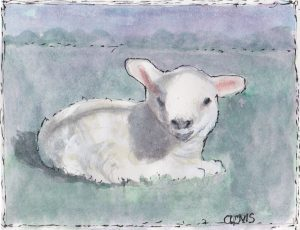"""Lamb 2,"" a Bring-a-Smile watercolor by Clovis Heimsath, artist"