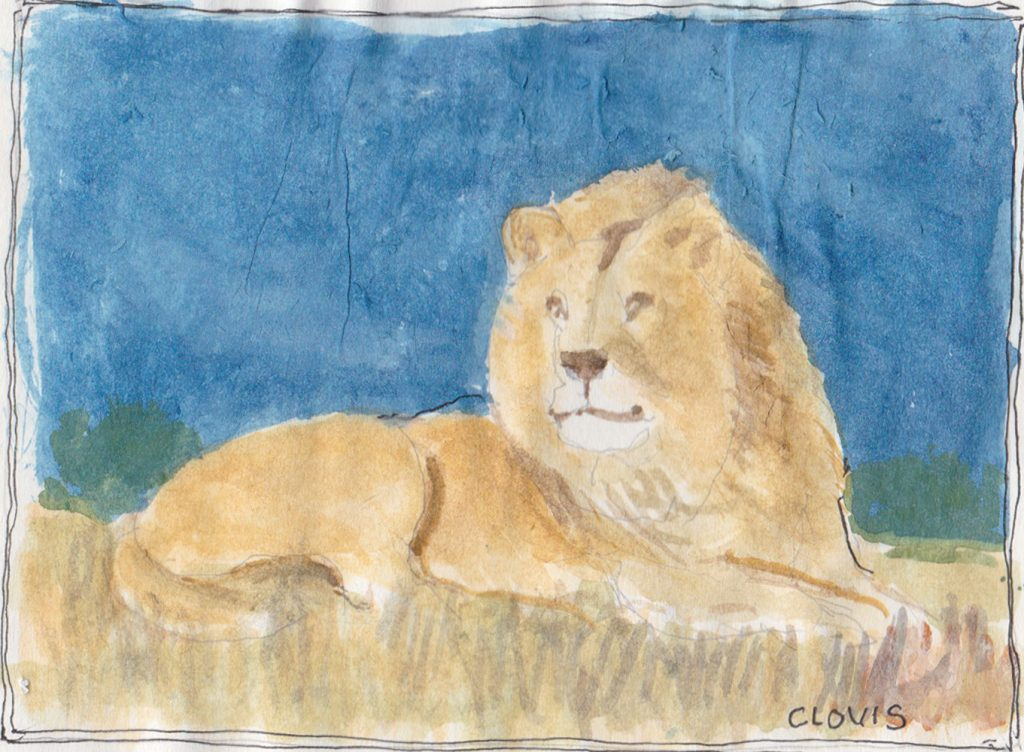 """Lion 2,"" a Bring-a-Smile watercolor by Clovis Heimsath, artist"