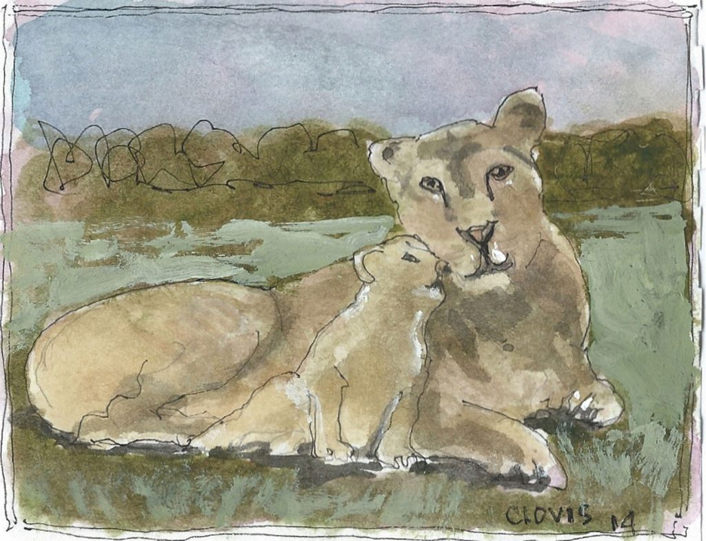 """Lion And Cub,"" a Bring-a-Smile watercolor by Clovis Heimsath, artist"