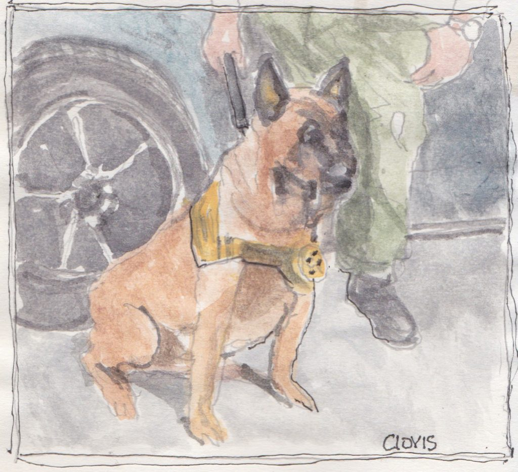 """Lobo,"" a Bring-a-Smile watercolor by Clovis Heimsath, artist"