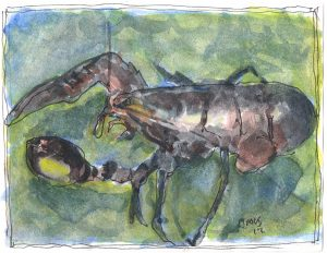 """Lobster,"" a Bring-a-Smile watercolor by Clovis Heimsath, artist"
