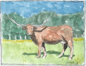 """Longhorn,"" a Bring-a-Smile watercolor by Clovis Heimsath, artist"