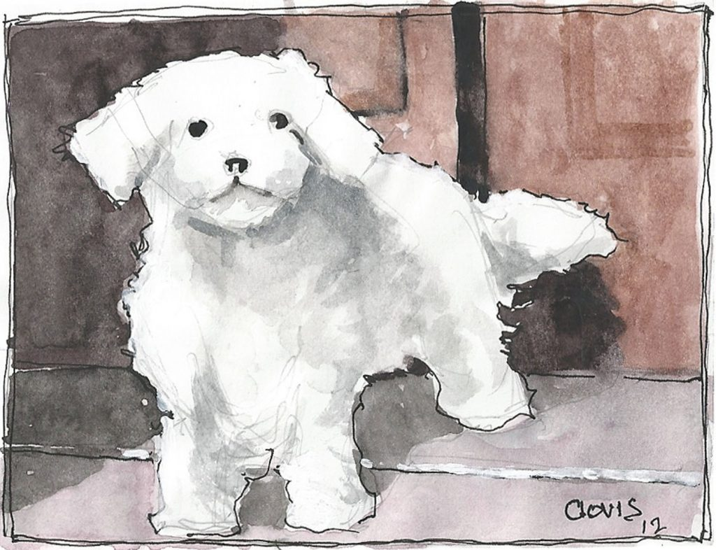 """Maltese,"" a Bring-a-Smile watercolor by Clovis Heimsath, artist"