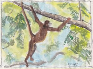 """Monkey 2,"" a Bring-a-Smile watercolor by Clovis Heimsath, artist"