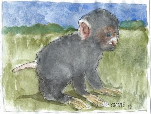 """Monkey,"" a Bring-a-Smile watercolor by Clovis Heimsath, artist"