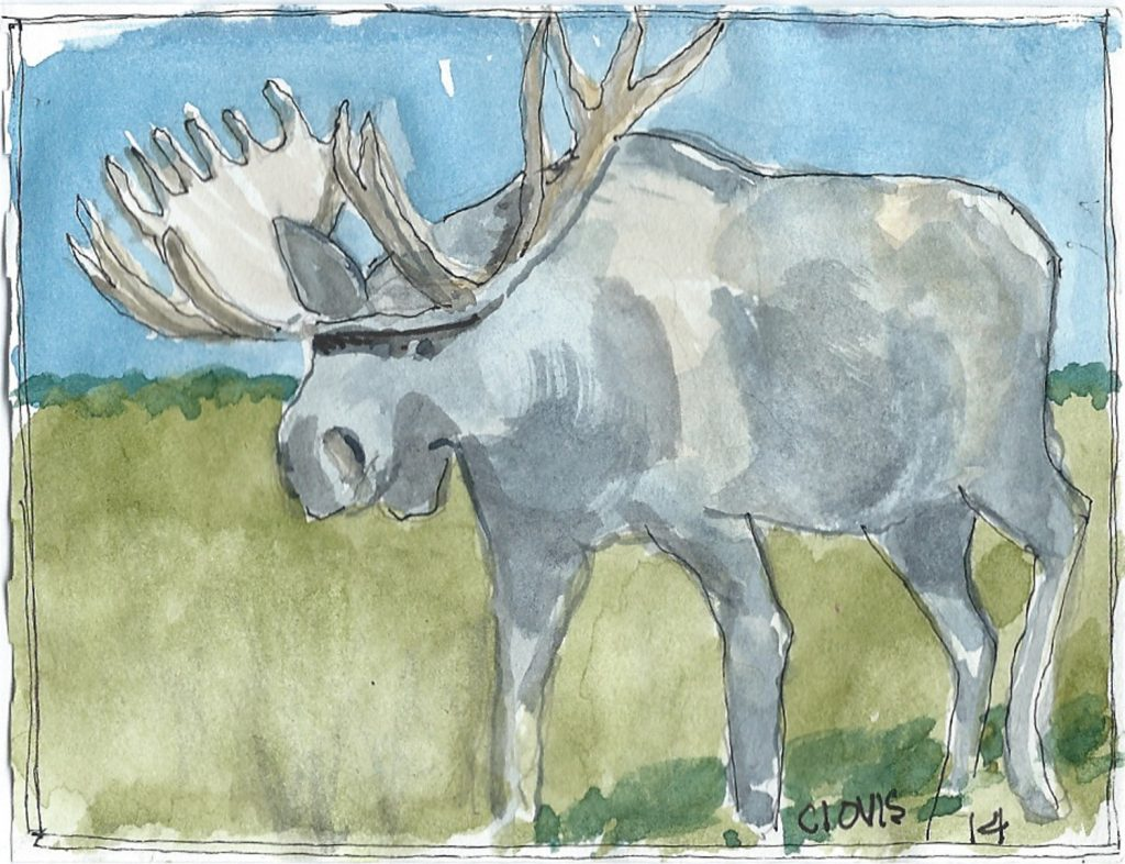 """Moose 2,"" a Bring-a-Smile watercolor by Clovis Heimsath, artist"