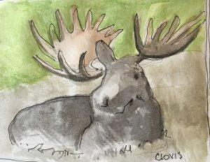 """Moose Ok,"" a Bring-a-Smile watercolor by Clovis Heimsath, artist"
