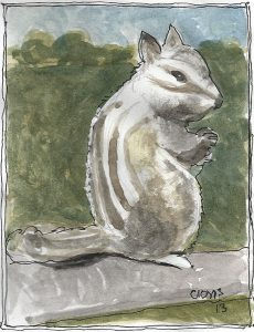 """Muskrat,"" a Bring-a-Smile watercolor by Clovis Heimsath, artist"