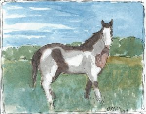 """New Mustang ,"" a Bring-a-Smile watercolor by Clovis Heimsath, artist"