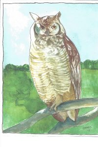 """Owl 2,"" a Bring-a-Smile watercolor by Clovis Heimsath, artist"