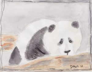 """Panda,"" a Bring-a-Smile watercolor by Dawn Heimsath, artist"