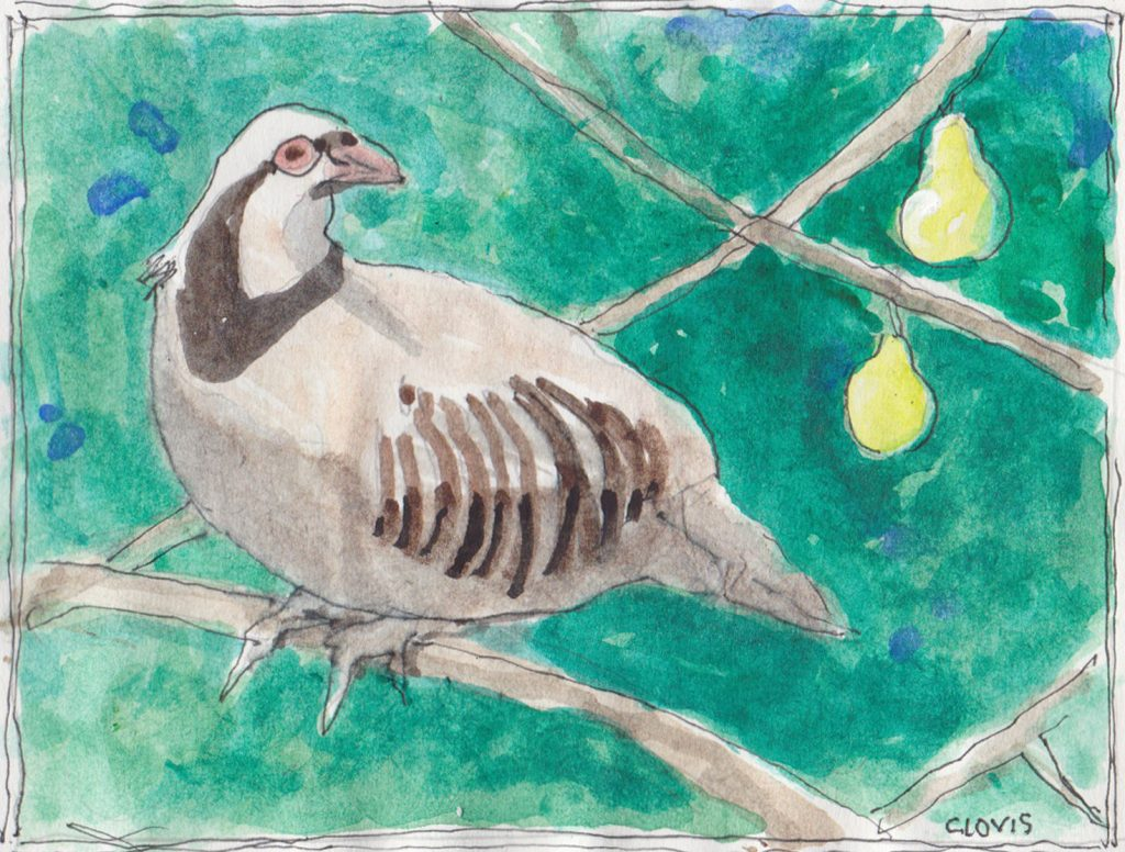"""Partridge 2,"" a Bring-a-Smile watercolor by Clovis Heimsath, artist"