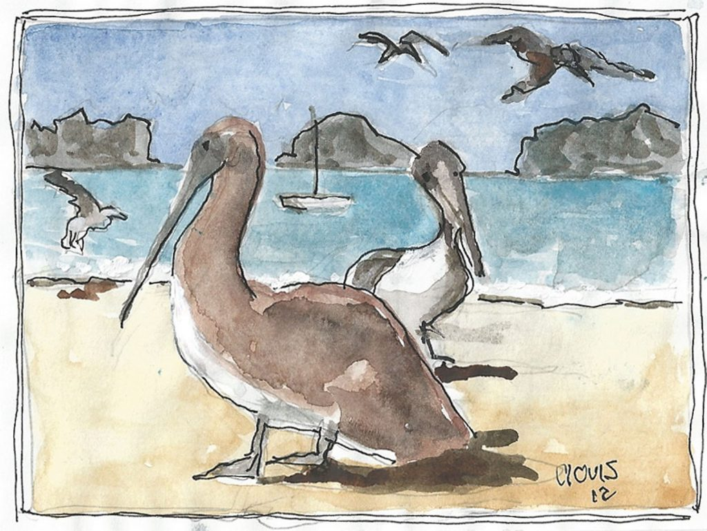"""Pelican,"" a Bring-a-Smile watercolor by Clovis Heimsath, artist"