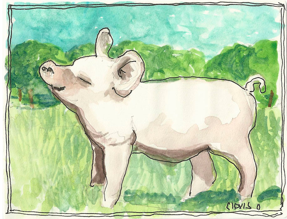 """Pig,"" a Bring-a-Smile watercolor by Clovis Heimsath, artist"