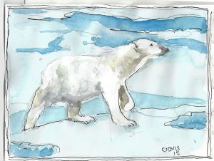 """Polar Bear,"" a Bring-a-Smile watercolor by Clovis Heimsath, artist"