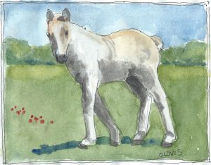 """Pony ,"" a Bring-a-Smile watercolor by Clovis Heimsath, artist"