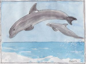 """Porpoise,"" a Bring-a-Smile watercolor by Clovis Heimsath, artist"