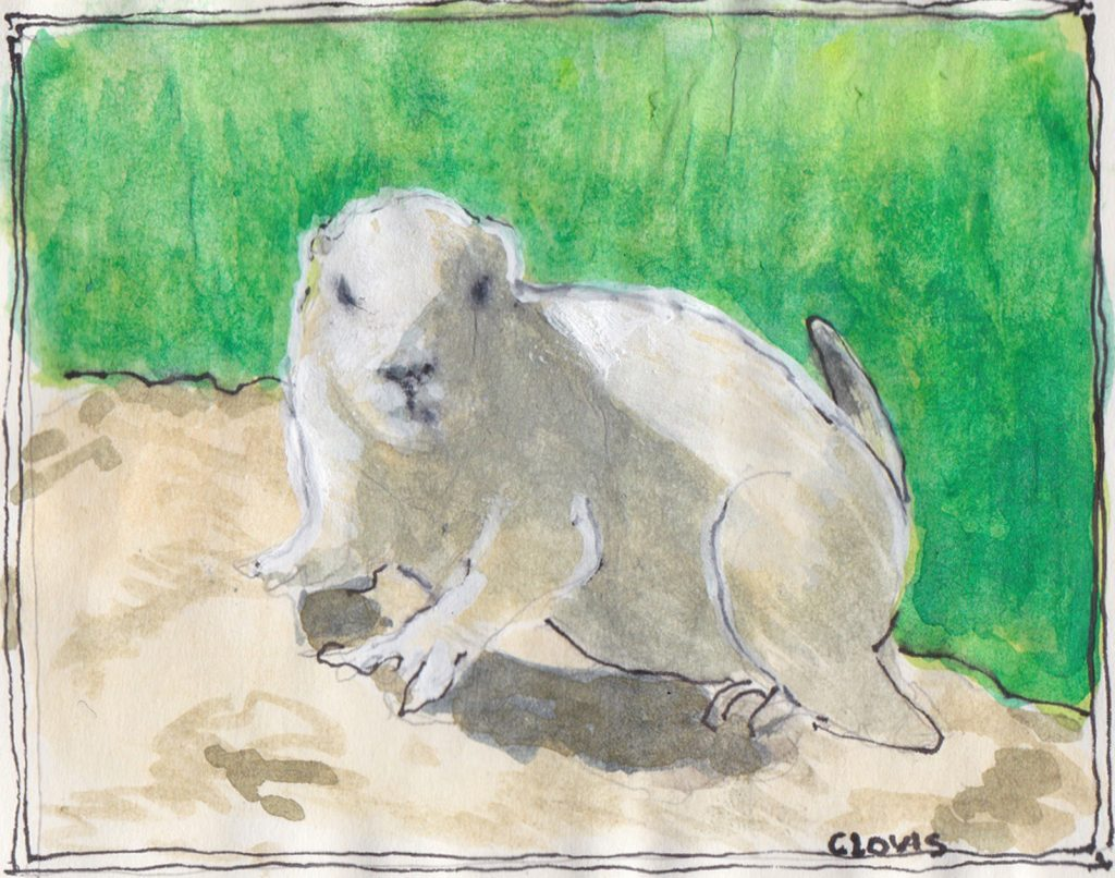 """Prairie Dog 2,"" a Bring-a-Smile watercolor by Clovis Heimsath, artist"
