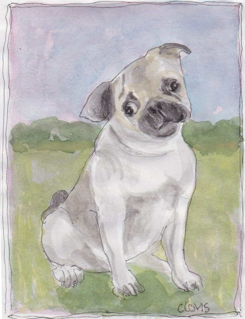 """Pug,"" a Bring-a-Smile watercolor by Clovis Heimsath, artist"