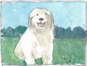 """Puppy,"" a Bring-a-Smile watercolor by Clovis Heimsath, artist"