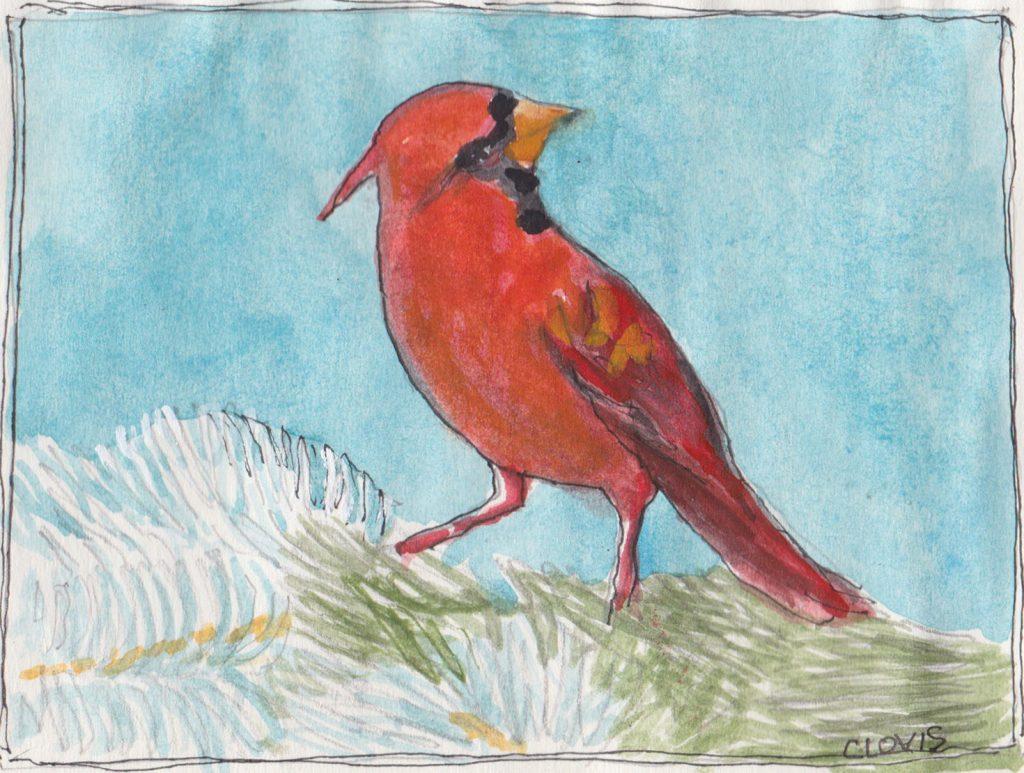 """Red Cardinal,"" a Bring-a-Smile watercolor by Clovis Heimsath, artist"