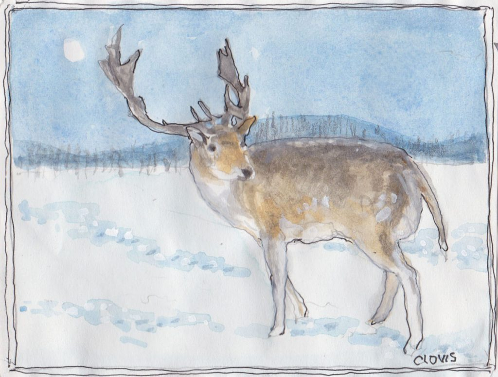 """Reindeer,"" a Bring-a-Smile watercolor by Clovis Heimsath, artist"