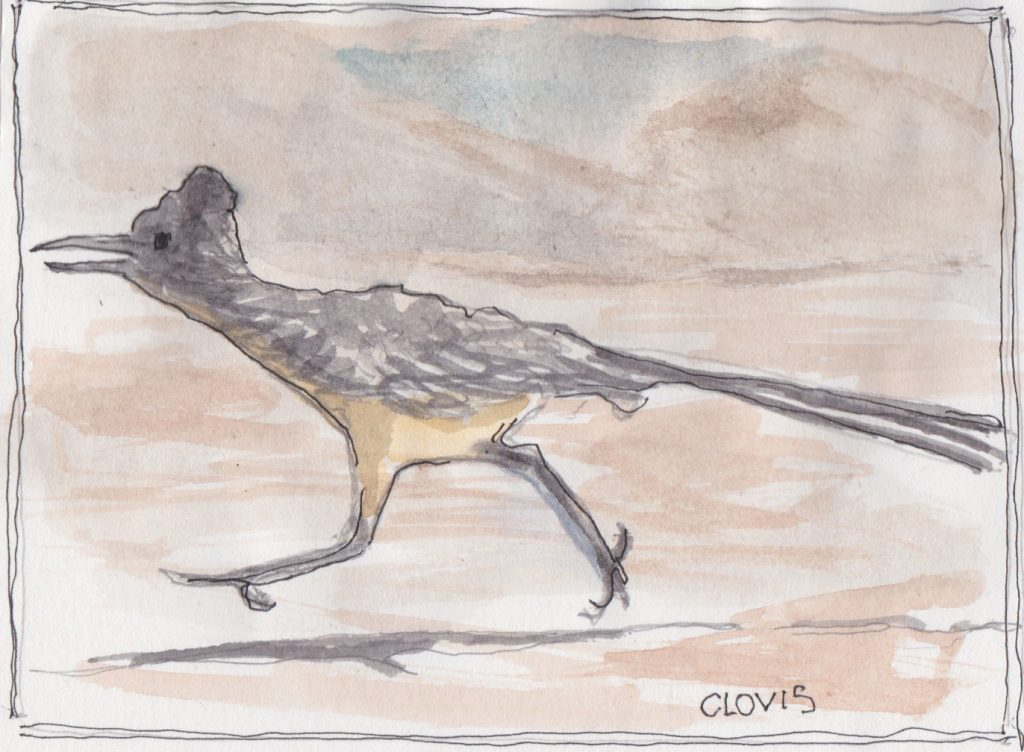 """Roadrunner,"" a Bring-a-Smile watercolor by Clovis Heimsath, artist"