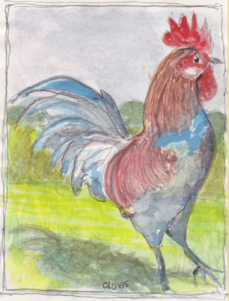 """Rooster 22,"" a Bring-a-Smile watercolor by Clovis Heimsath, artist"