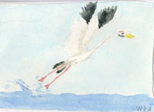 """Ruben's Bird,"" a Bring-a-Smile watercolor by Ruben Santa-Waldron, artist"