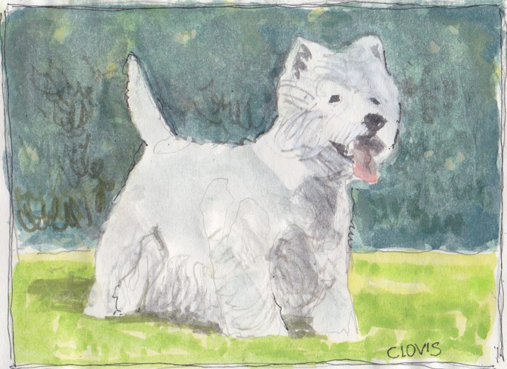 """Scottie,"" a Bring-a-Smile watercolor by Clovis Heimsath, artist"