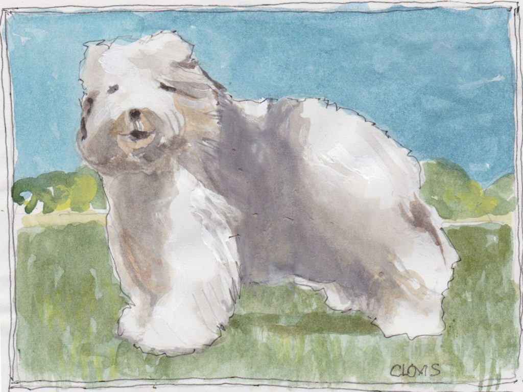 """Sheep Dog,"" a Bring-a-Smile watercolor by Clovis Heimsath, artist"