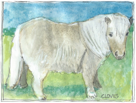 """Shetland Pony,"" a Bring-a-Smile watercolor by Clovis Heimsath, artist"