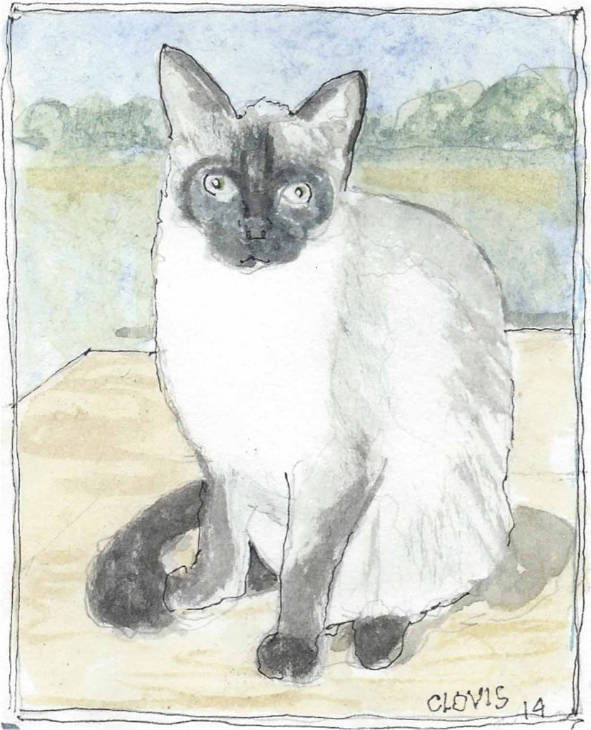 """Siamese Cat,"" a Bring-a-Smile watercolor by Clovis Heimsath, artist"