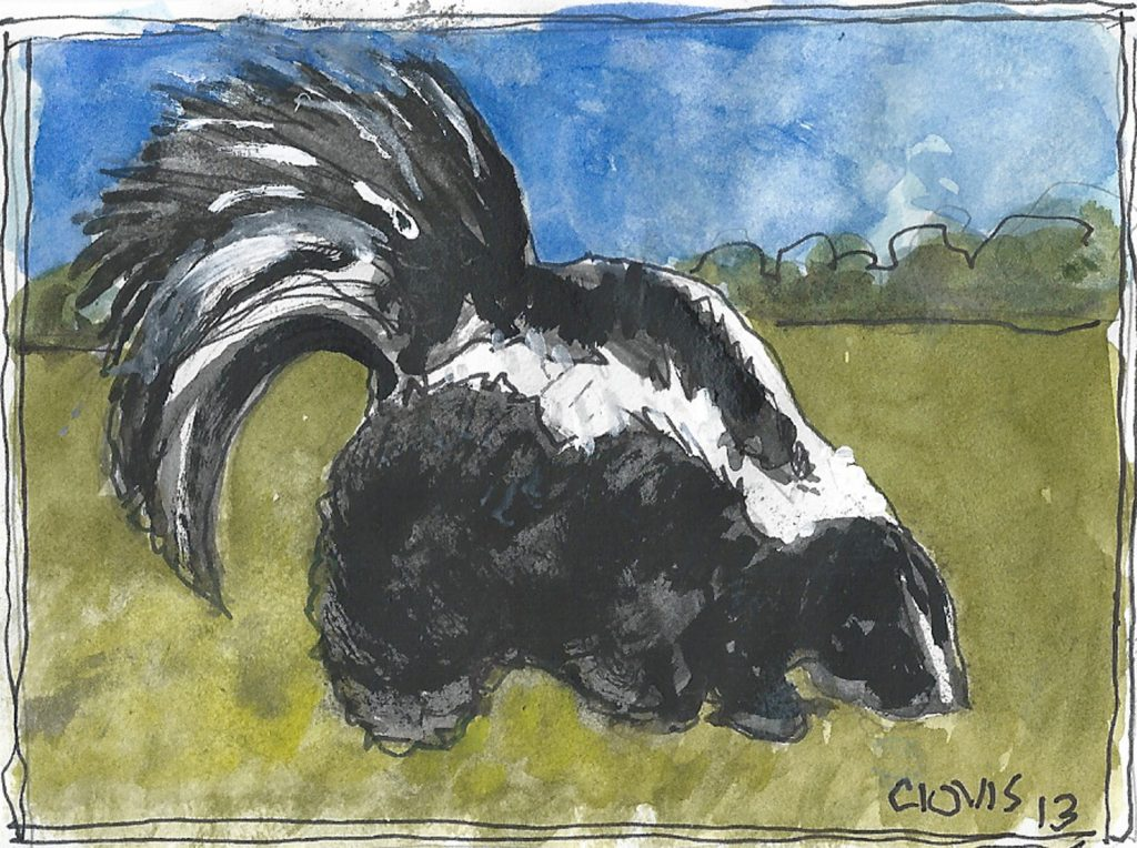 """Skunk,"" a Bring-a-Smile watercolor by Clovis Heimsath, artist"