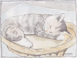 """Sleeping Kitty,"" a Bring-a-Smile watercolor by Clovis Heimsath, artist"