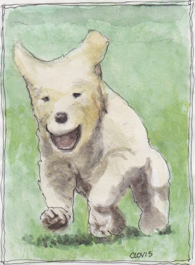 """Smiling Puppy,"" a Bring-a-Smile watercolor by Clovis Heimsath, artist"