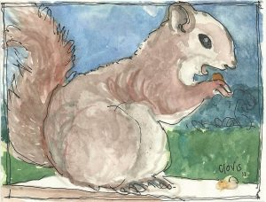 """Squirrel 2,"" a Bring-a-Smile watercolor by Clovis Heimsath, artist"