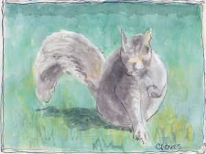 """Squirrel,"" a Bring-a-Smile watercolor by Clovis Heimsath, artist"
