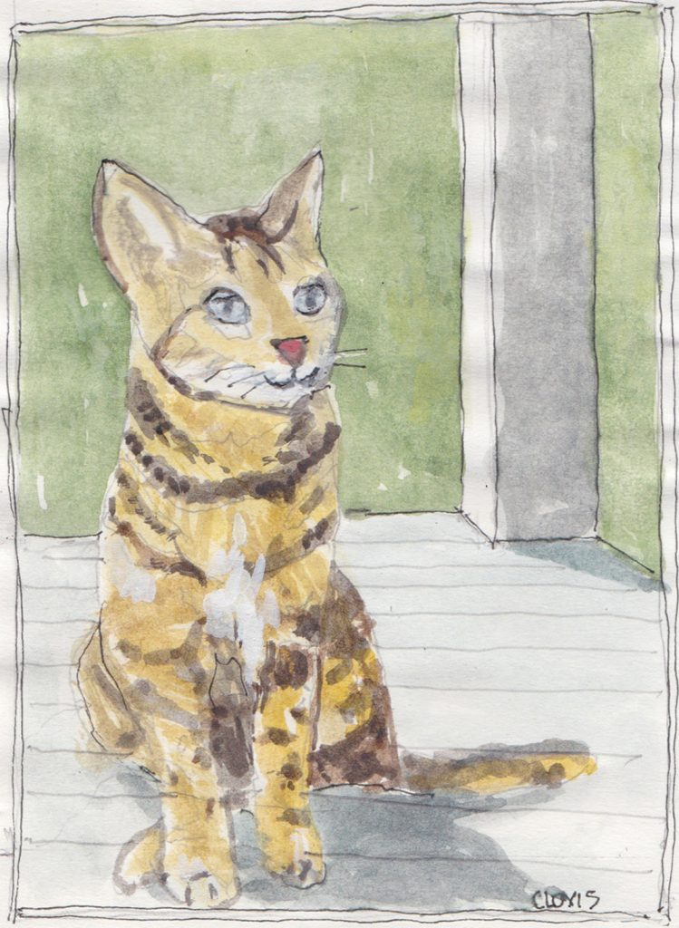 """Standing Cat,"" a Bring-a-Smile watercolor by Clovis Heimsath, artist"