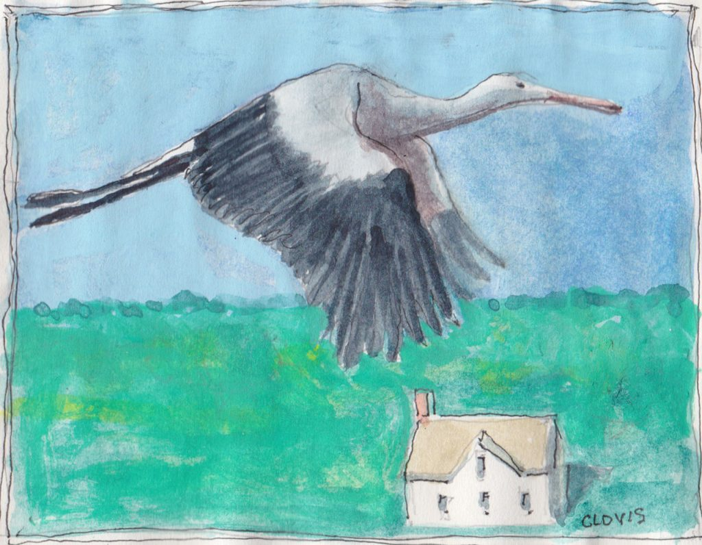 """Stork,"" a Bring-a-Smile watercolor by Clovis Heimsath, artist"