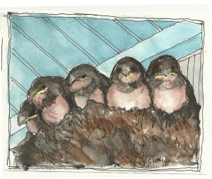 """Swallows,"" a Bring-a-Smile watercolor by Clovis Heimsath, artist"