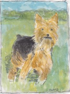 """Terrier 2,"" a Bring-a-Smile watercolor by Clovis Heimsath, artist"