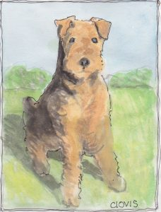 """Terrier,"" a Bring-a-Smile watercolor by Clovis Heimsath, artist"