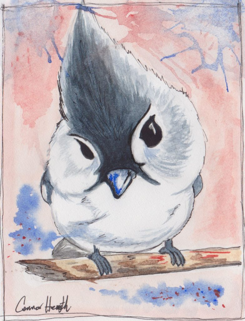 """Tiny Blue Jay,"" a Bring-a-Smile watercolor by Connor Heimsath, artist"
