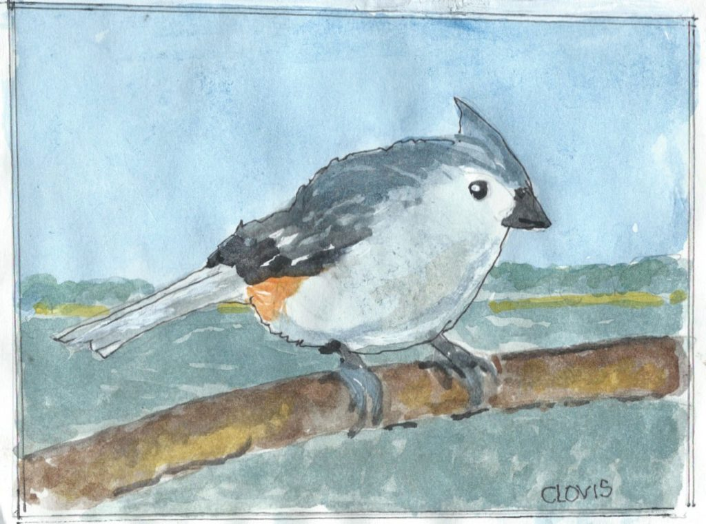 """Titmouse,"" a Bring-a-Smile watercolor by Clovis Heimsath, artist"