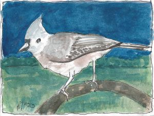 """Tufted Titmouse,"" a Bring-a-Smile watercolor by Clovis Heimsath, artist"