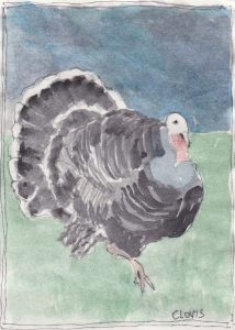 """Turkey 7,"" a Bring-a-Smile watercolor by Clovis Heimsath, artist"