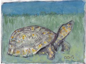 """Turtle ,"" a Bring-a-Smile watercolor by Clovis Heimsath, artist"