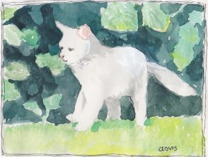 """White Cat 2,"" a Bring-a-Smile watercolor by Clovis Heimsath, artist"
